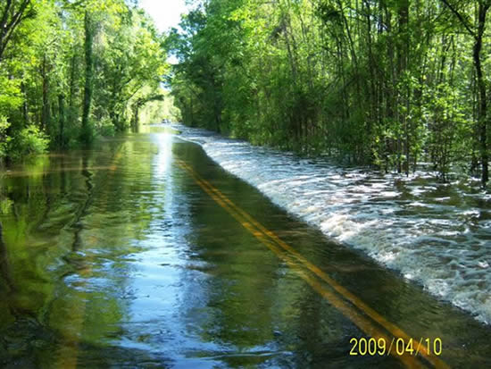 Altamaha Park Road covered with water